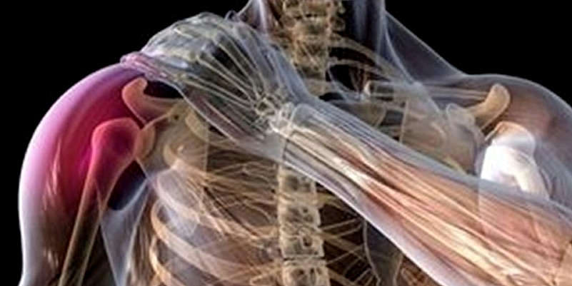 Shoulder Injury Soft Tissue Fixation