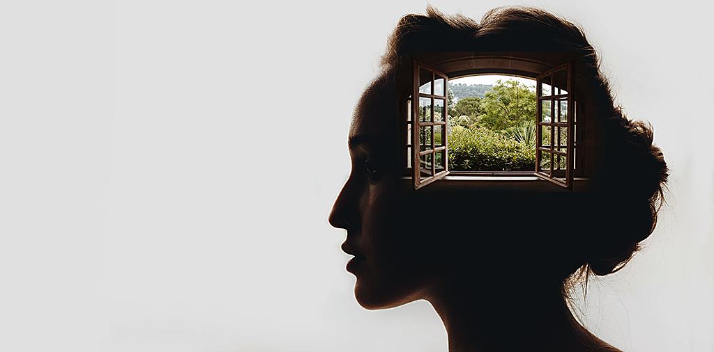 Window Mind Header